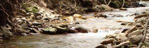 Reeds Creek