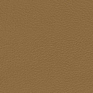 leather brown bg