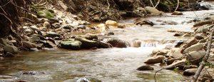 creek slider